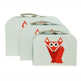 Geo Forest Fox storage cases